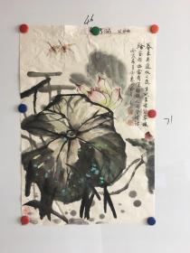 河南画家孙宗惠精美国画荷叶图一幅46*71CM