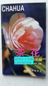 茶花-我的养花经验采撷 王俊年编著 中国林业出版社