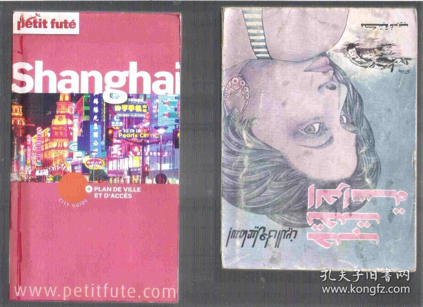 法语原版上海旅游指南 Shanghai et ses environs (32开本长条本) petit futé 版