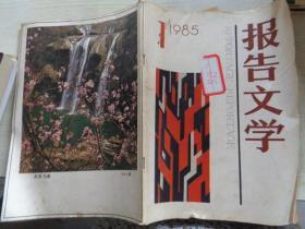 报告文学 1985 1