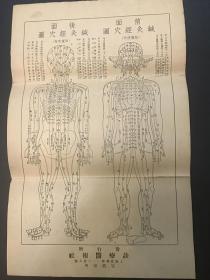 《针灸经穴图》民国上海诊疗医报社精印一张