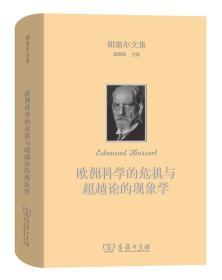 欧洲科学的危机与超越论的现象学(胡塞尔文集)