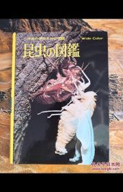昆虫の図鑑