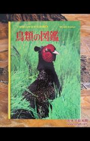 鸟类の図鑑