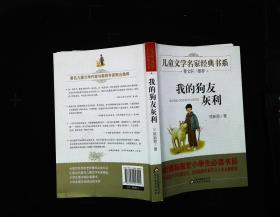 曹文轩推荐儿童文学经典书系 我的狗友灰利