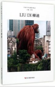 柳迪中国当代摄影图录