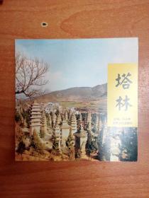 塔林(40开本画册)