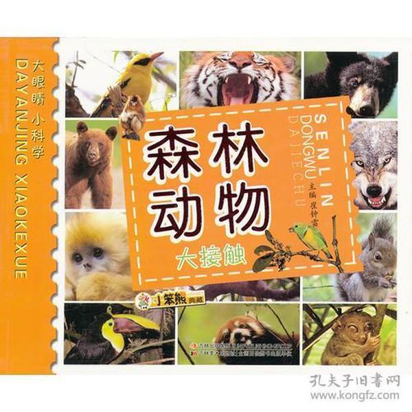 森林动物大接触——大眼睛小科学