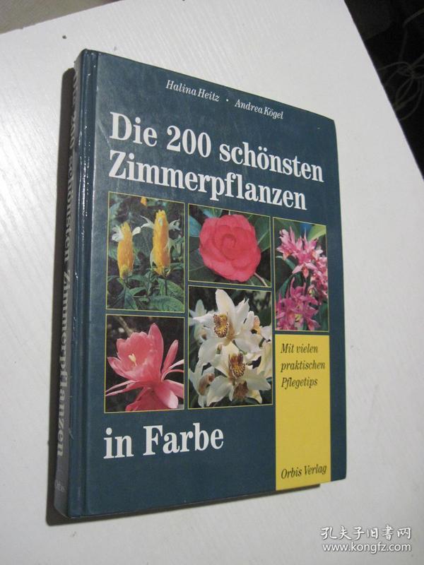Die 200 schönsten Zimmerpflanzen
