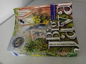 英文原版 Big Java(international edition restricted not for sale in noeth america)