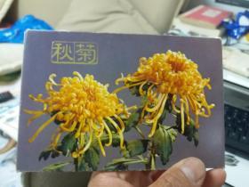 明信片秋菊 一套11张全 78一版一印 内九五品       新A3