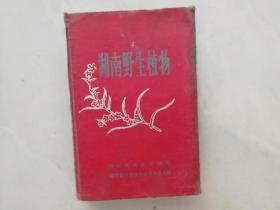 湖南野生植物(精装)