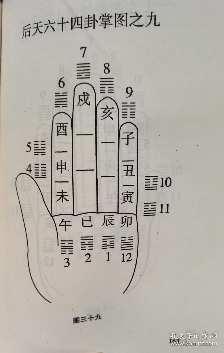 掐指神算实例讲义 八卦案例四柱八字预测学占卜书籍 康义成 康氏