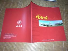 杭州娃哈哈集团辉煌15周年企业形象宣传册