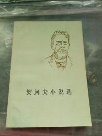 契诃夫小说选(上)