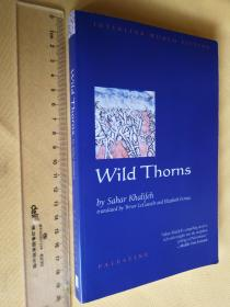 英文原版 Wild Thorns (Interlink World Fiction) Sahar Khalifeh