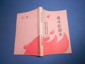 战斗在新丰--89年一版一印