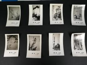 1978年王雪涛等国画照片15张,为非卖品