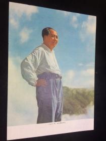 文革 , 宣传画,一九六一年,毛主席在庐山,16开