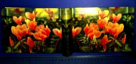 2AU6844 相册1本 照片16张 北京第二棉纺织厂的年轻人 纪玉美
