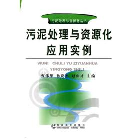 污泥处理与资源化丛书:污泥处理与资源化应用实例