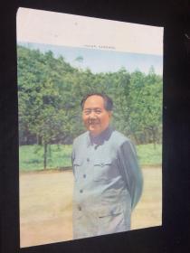 文革,宣传画,一九六五年,毛主席在井冈山 , 16开