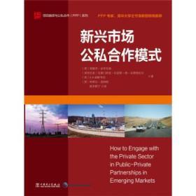 项目融资与公私合作 PPP 系列:新兴市场公私合作模式