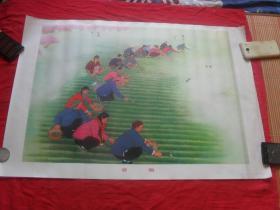 2开文革宣传画---春锄(保真,包老)74年8月第1次印刷   品极佳