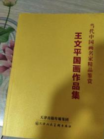 当代中国画名家精品鉴赏  王文平国画作品集(12开品好近全新)