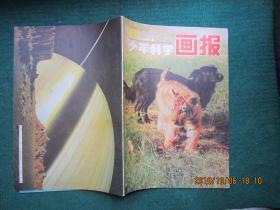 少年科学画报 1984年第12期
