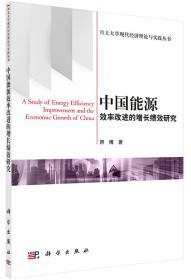 西北大学现代经济理论与实践丛书:中国能源效率改进的增长绩效研究
