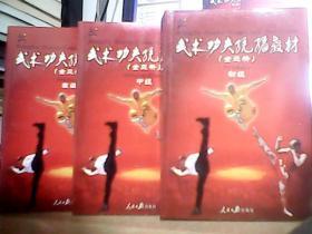 武术功夫统编教材全三册
