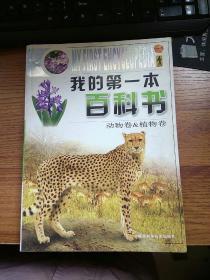 我的第一本百科书 动物卷 植物卷