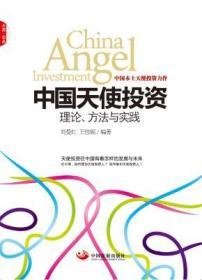 中国天使投资:理论、方法与实践