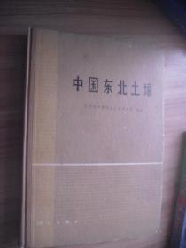 中国东北土壤