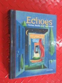 echoes  fiction media and non fiction    共544页 精装本