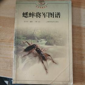 蟋蟀将军图谱