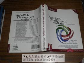 Agile Web Development with Rails (Fourth Edition)