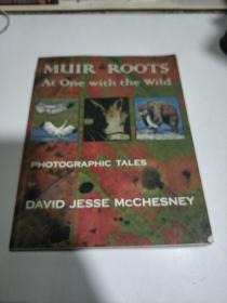 PHOTOGRAPHIC TALES by DAVID JESSE MCCHESNEY (外文)品相不好