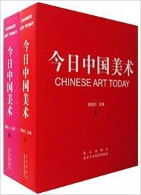 今日中国美术(套装共2册)