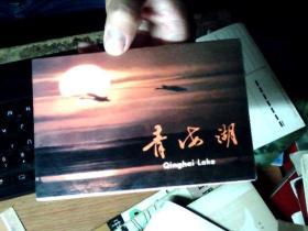 明信片:青海湖 10张全《英汉日》  九品稍弱       7C