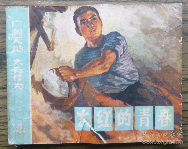 广阔天地大有作为 火红的青春   (18-1074)