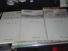 沧州历史文化丛书--沧州出土墓志、沧州铁狮与旧城、沧州明代单桥 【3本】