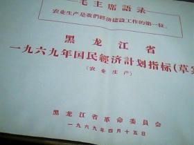 黑龙江省一九六九年国民经济计划指标[草案]农业生产 9页