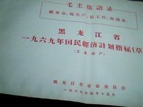 黑龙江省一九六九年国民经济计划指标[草案]工业生产11页
