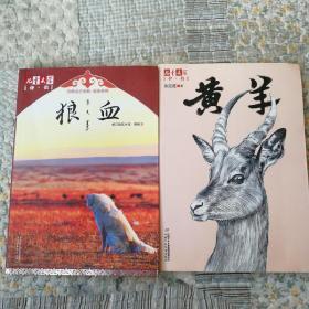 儿童文学伴侣:狼血+黄羊〈两册合售〉