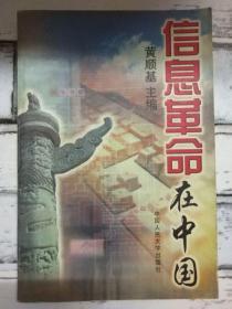 《信息革命在中国》
