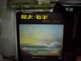 尼太.戈尔(朝阳国际电子乐队演出)黑胶唱片