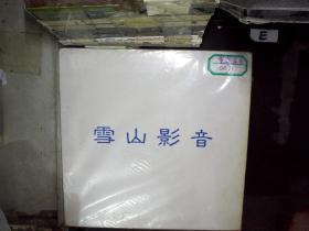 重案实录 大白胶唱片