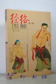 经络图解(第三版)蔺云桂编著 福建科学技术出版社